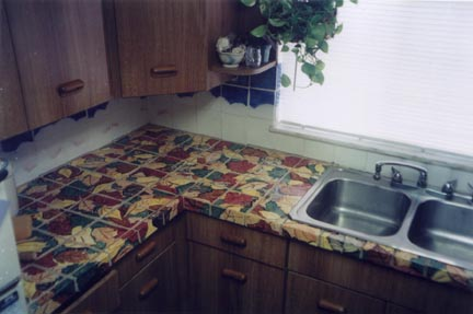 Shaker Heights Ohio Ceramic Tile Kitchen by George Woideck of Artisan Architectural Ceramics